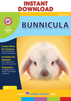 Bunnicula (Novel Study) Gr. 4-7 - eBook