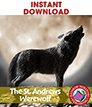 The St. Andrews Werewolf (Novel Study) Gr. 6-8 - eBook