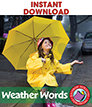 Weather Words: Sleet, Hail, Snow, Rain & Wind Gr. 1-3 - eBook