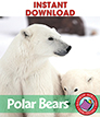 Polar Bears Gr. 1-2 - eBook