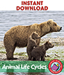 Animal Life Cycles Gr. 2-3 - eBook