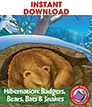 Hibernation: Badgers, Bears, Bats & Snakes Gr. 2-3 - eBook