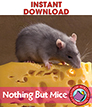 Nothing But Mice Gr. K-1 - eBook
