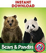 Bears and Pandas Gr. 1-2 - eBook