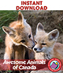 Awesome Animals of Canada Gr. 2-3 - eBook
