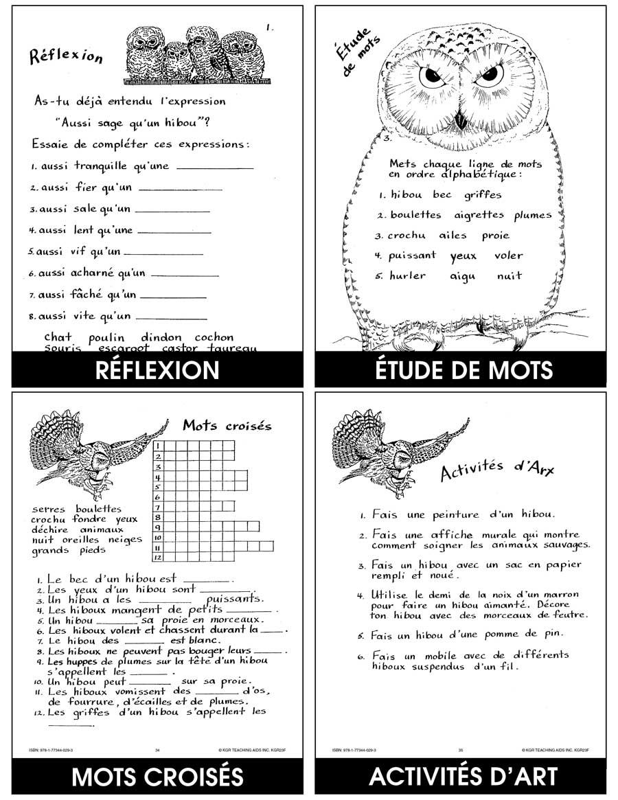 Les Hiboux Grades 4 To 8 Ebook Lesson Plan Rainbow