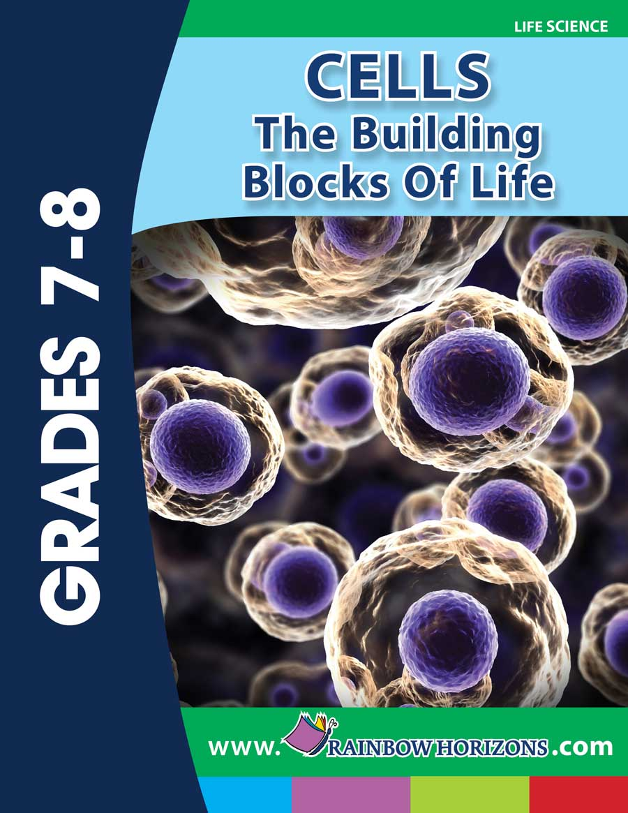 cells the building blocks of life essay This is an entire package for the middle school life science unit 'cells: the building blocks of life' derived from the prentice hall text: 'science explorer: life science.