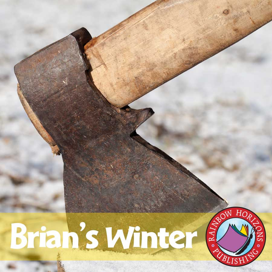 Brian's Winter (Novel Study) Gr. 4-7 - eBook