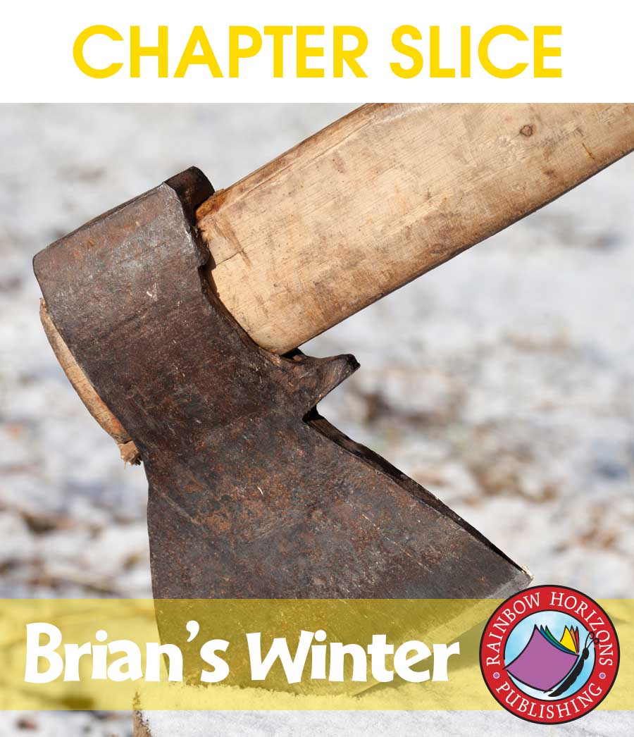 Brian's Winter (Novel Study) Gr. 4-7 - CHAPTER SLICE - eBook