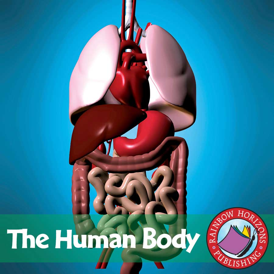 The Human Body Gr. 4-6 - eBook