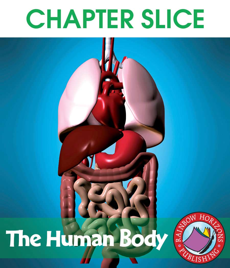 The Human Body Gr. 4-6 - CHAPTER SLICE - eBook