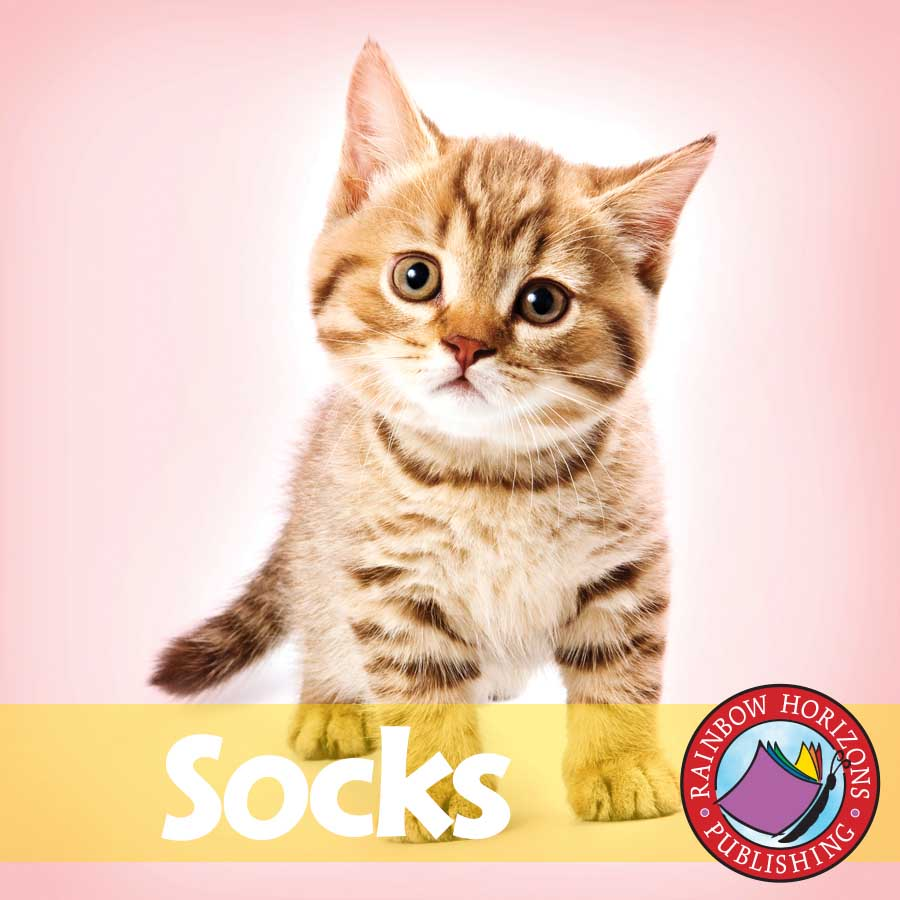 Socks (Novel Study) Gr. 3-4 - eBook