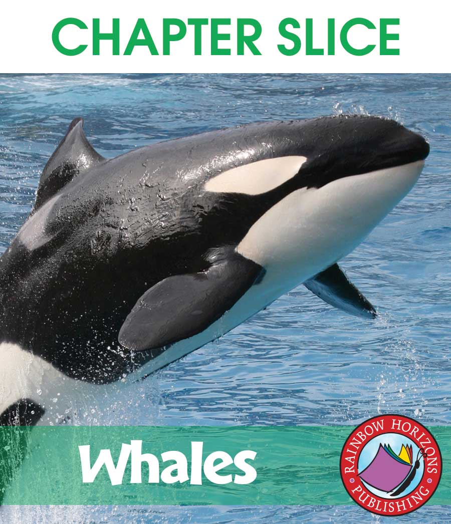 Whales Gr. 2-3 - CHAPTER SLICE - eBook